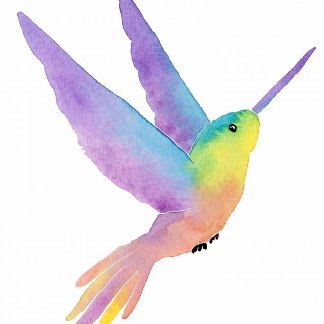 Kolibri 2 WL
